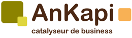 Ankapi - agence conseil en marketing